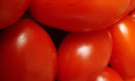 4-istamina e alimenti da evitare nelle allergie agli occhi (congiuntiviti allergiche e alimenti da non mangiare)